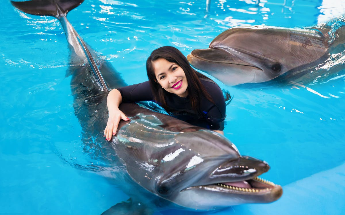 dubai dolphinarium: swimming with dolphins-1