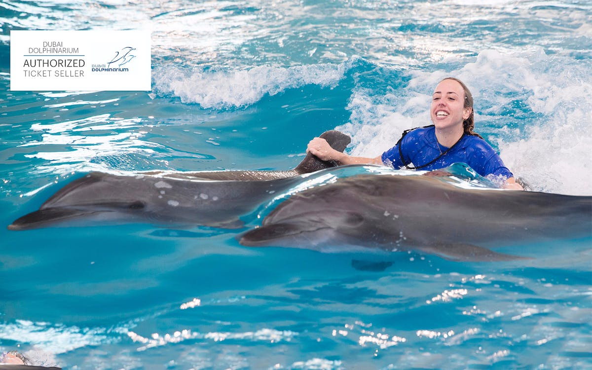dubai dolphinarium: swimming with dolphins-2