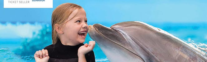 dubai-dolphinarium swimming with dolphins
