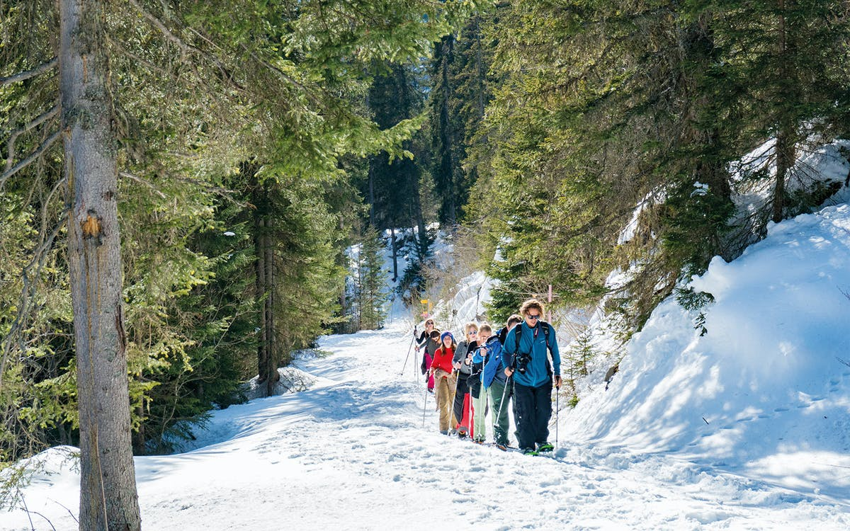 guided snowshoe tour to grünenbergpass  (with full equipment)-0