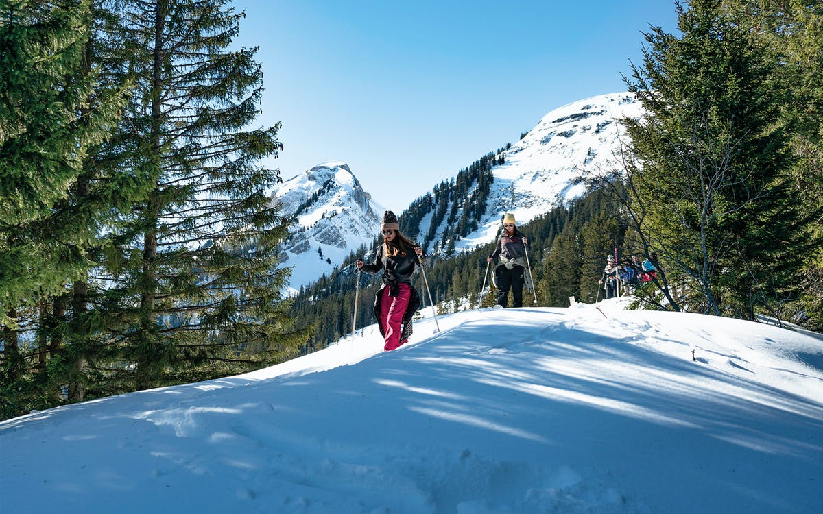 guided snowshoe tour to wetterhorn grindelwald  (with full equipment)-0