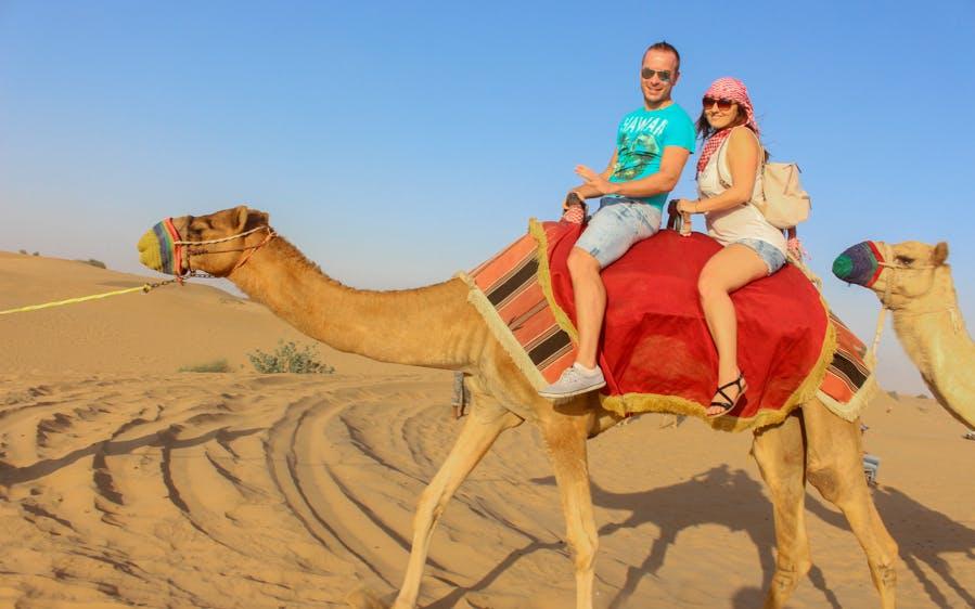 morning camel safari-0