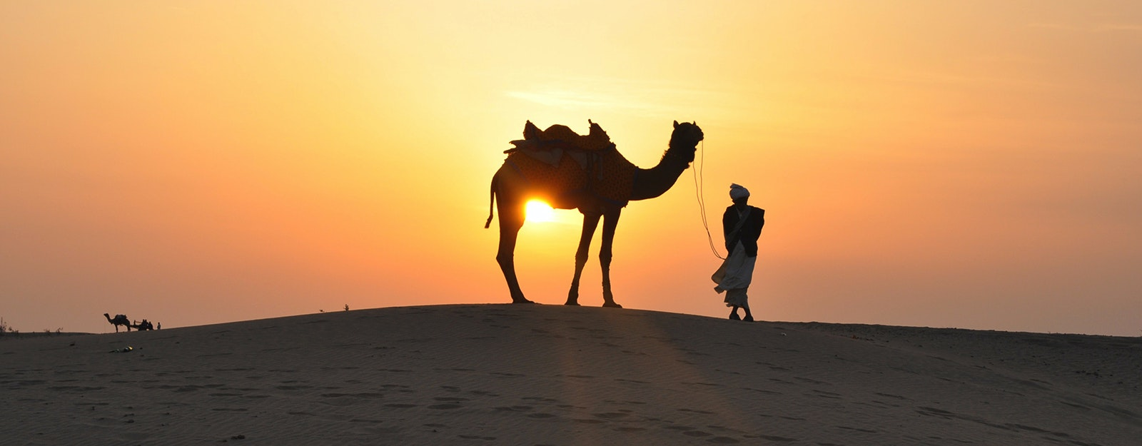 Camel rides and safaris dubai headout a typical camel desert safari experience thecheapjerseys Choice Image