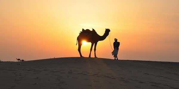 أنشطة مغامرات دبي - صحراء سفاري دبي