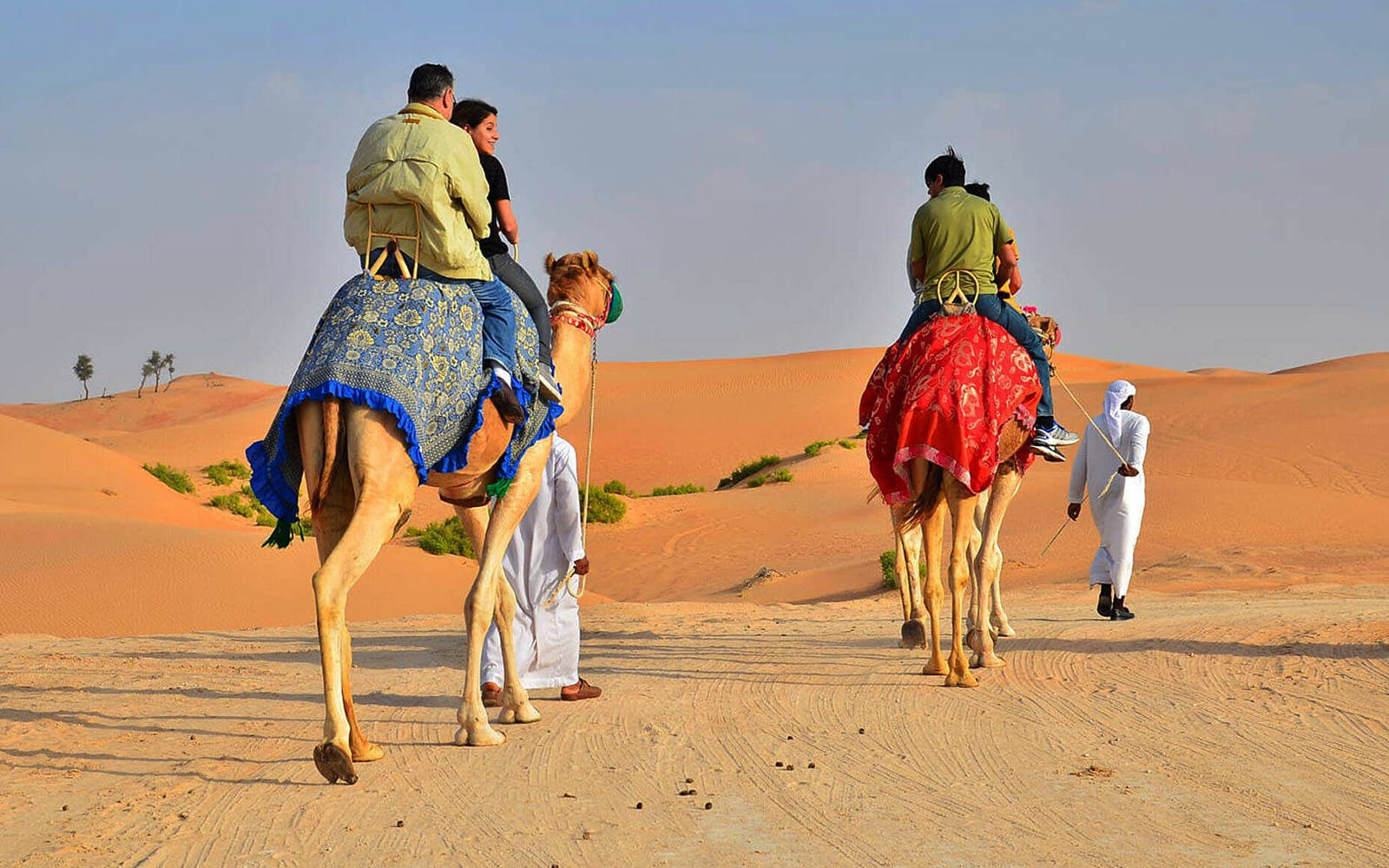 morning camel safari-2