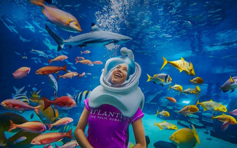 fish tales tour at atlantis aquaventure-1