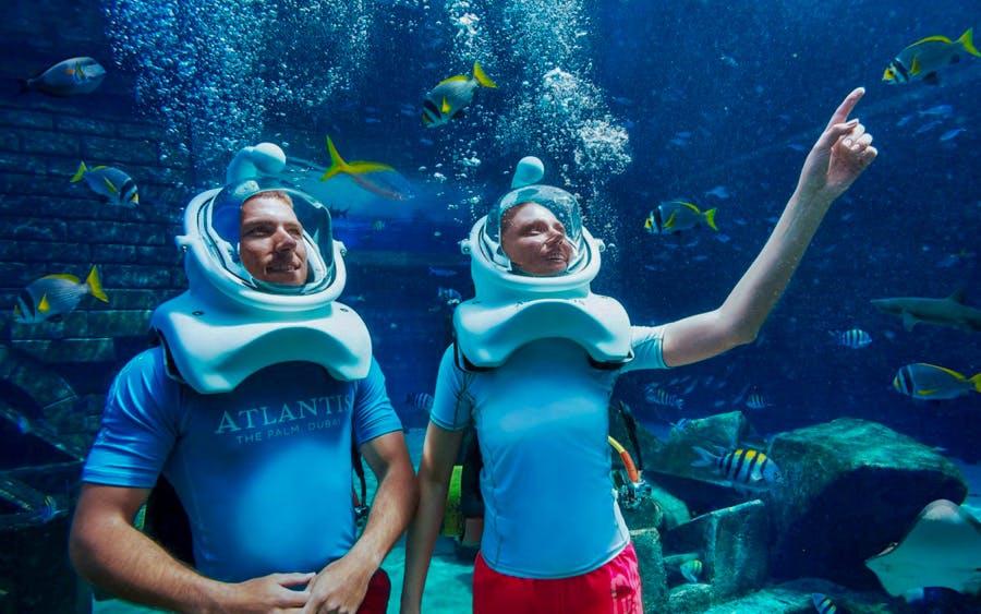 fish tales tour at atlantis aquaventure-0