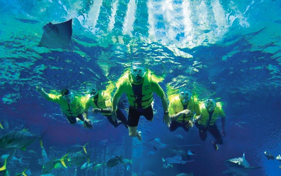 ultimate snorkel experience at atlantis aquaventure-0