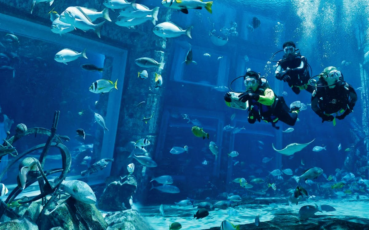 scuba dive at atlantis aquaventure-1