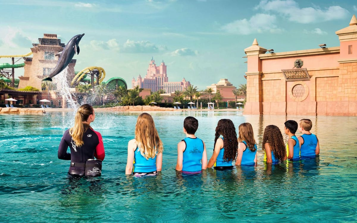 dolphin trek at atlantis aquaventure-1