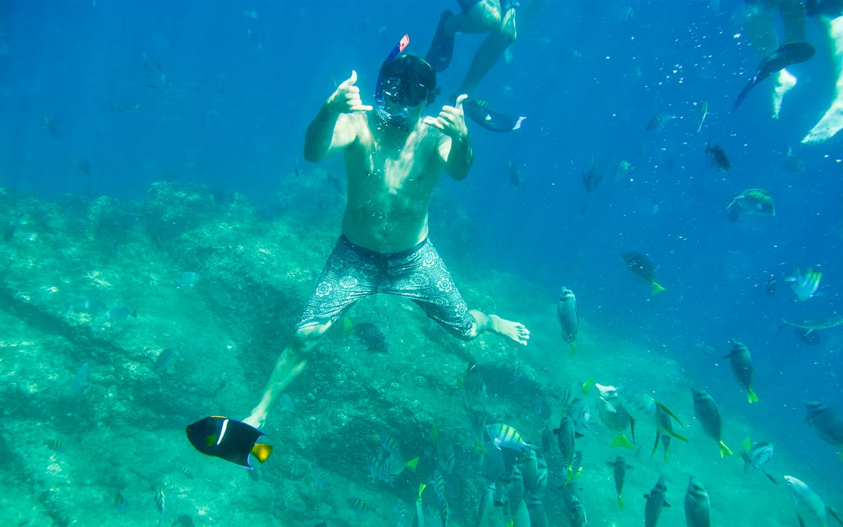 guided snorkel tour-0