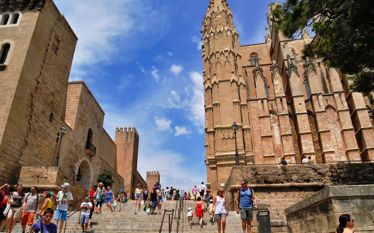 palma cathedral priority entrance with guided tour-0