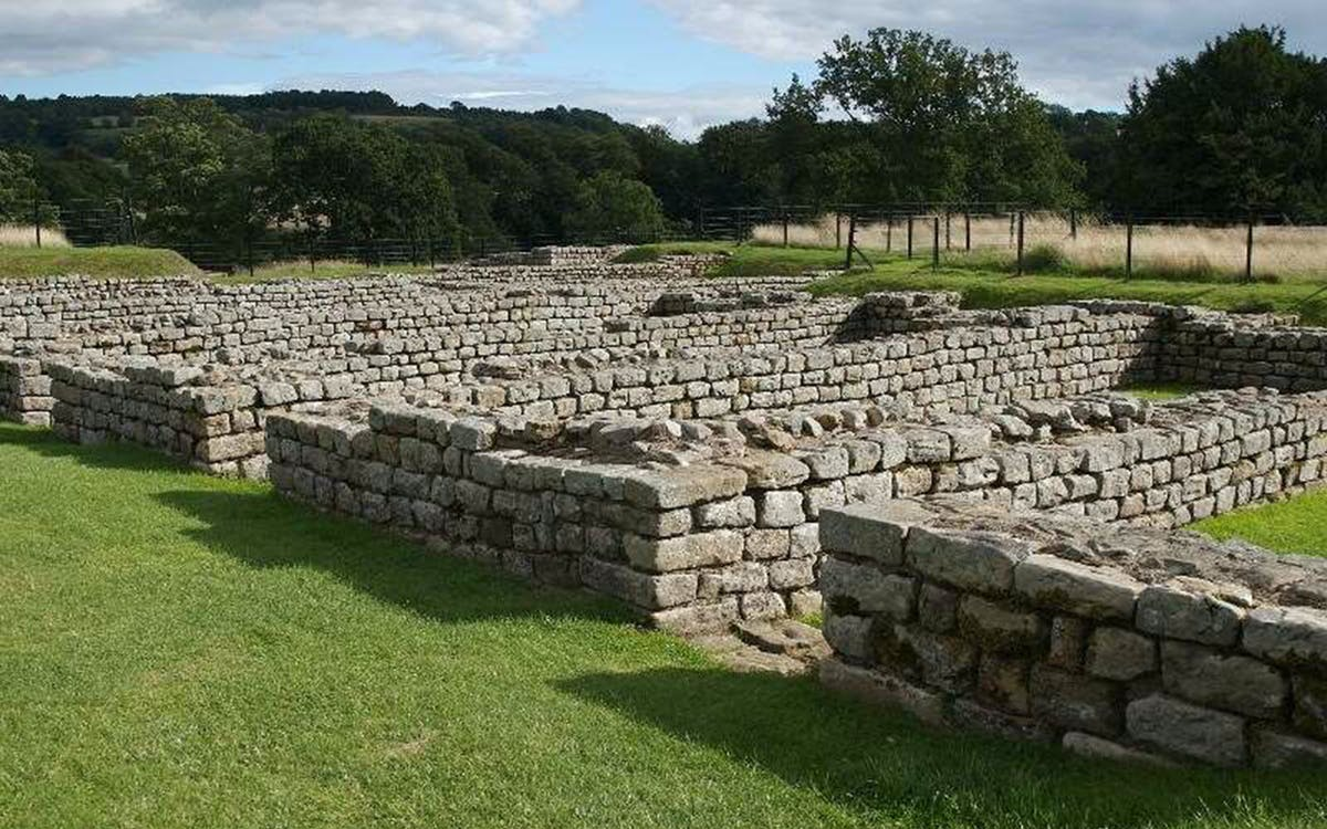 chesters roman fort & museum: admission ticket-0