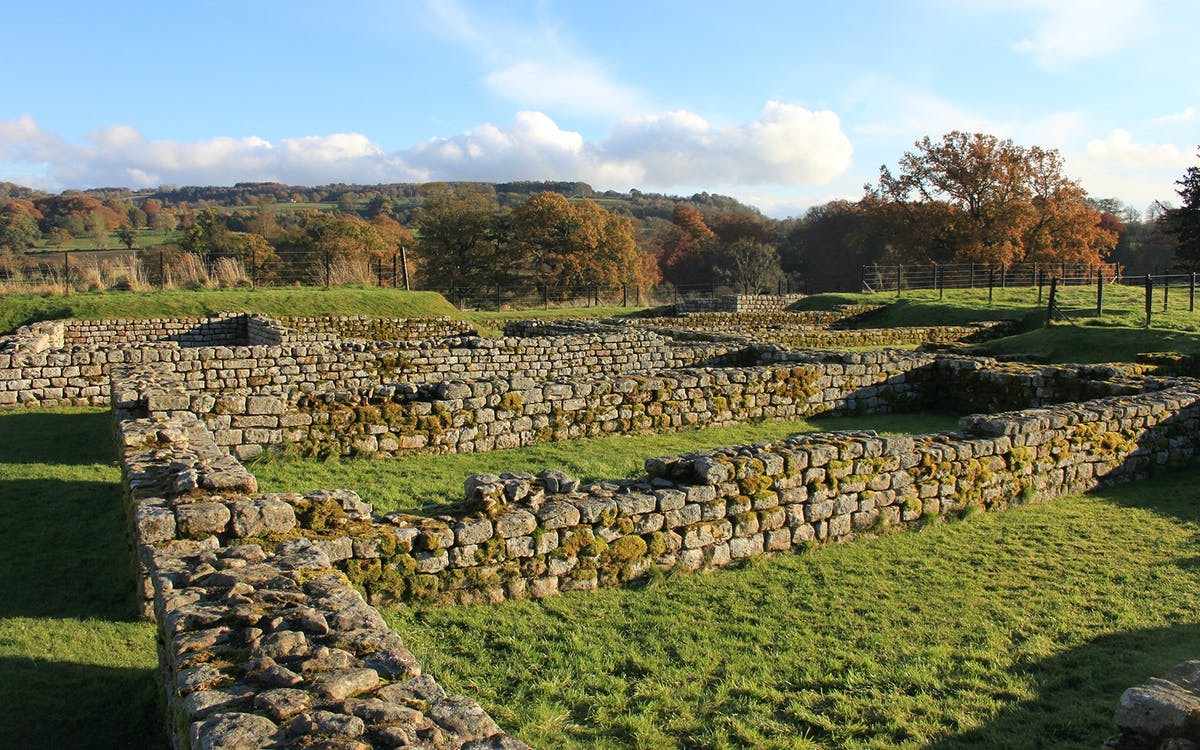 chesters roman fort & museum: admission ticket-1