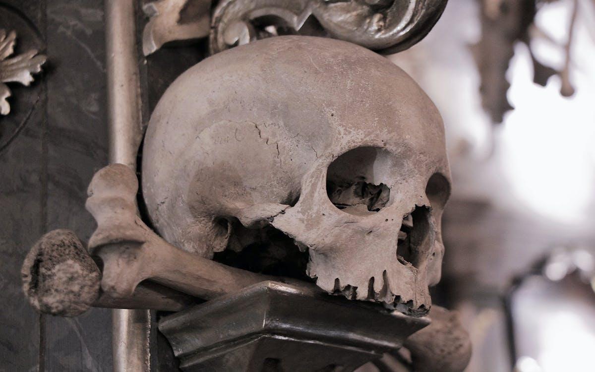 from prague: silver town kutná hora & church of bones tour-0