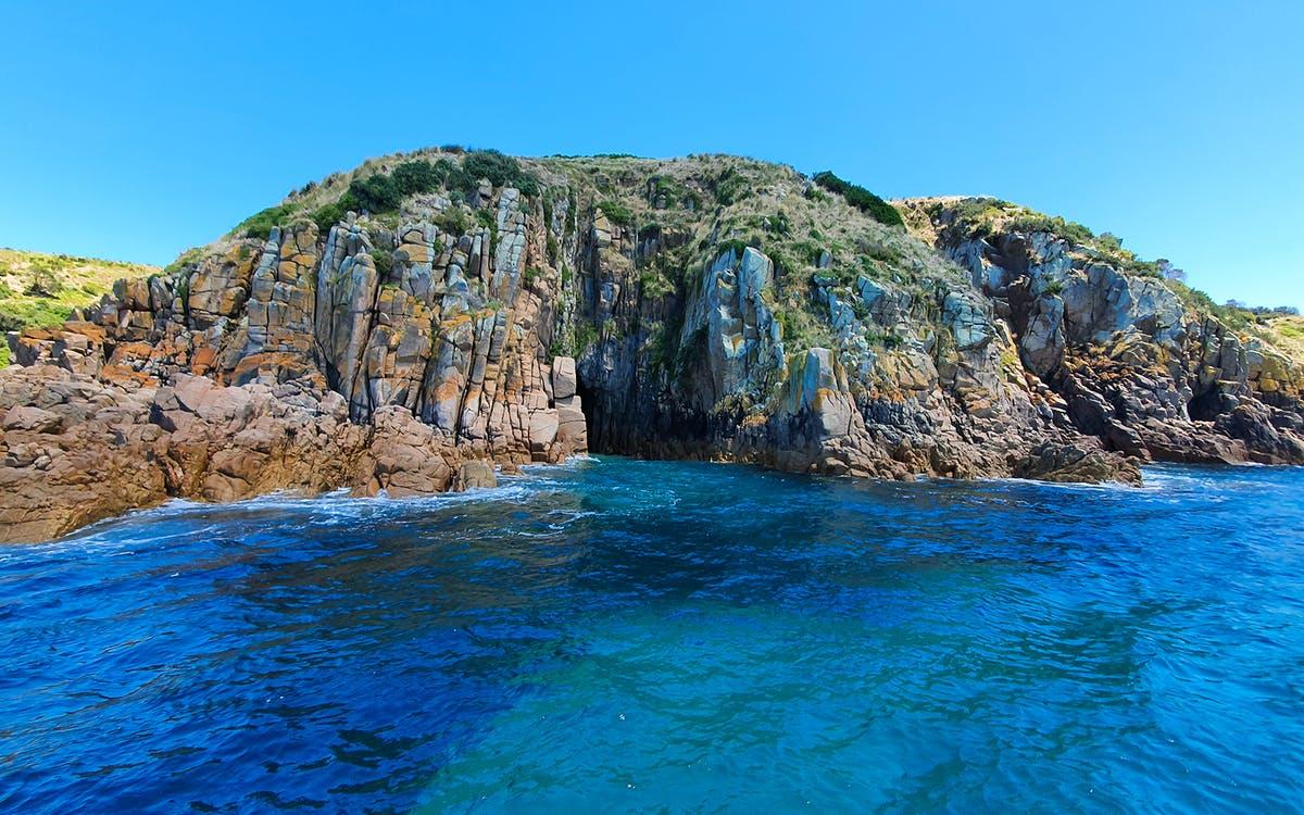 phillip island cape woolamai cruise-0