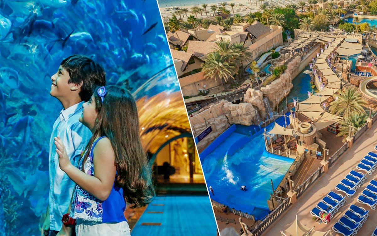 dubai aquarium & underwater zoo + wild wadi park-0