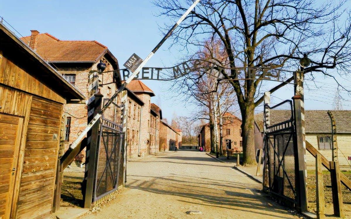 auschwitz & birkenau: tour with individual entrance-0