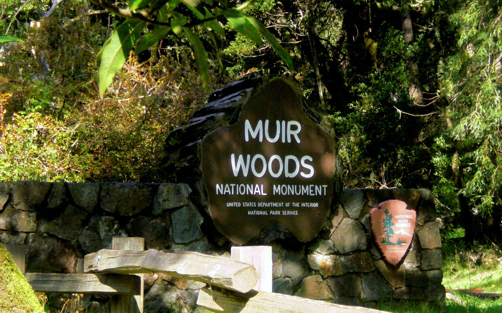 muir woods and sausalito half day tour-1