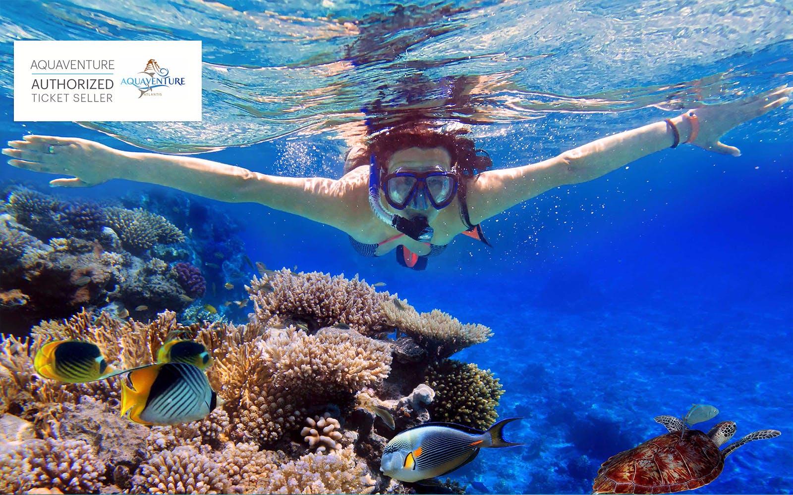 3 Day Dubai Itinerary - Aquaventure Waterpark -  3