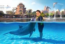 Dolphin Bay Dubai - 3