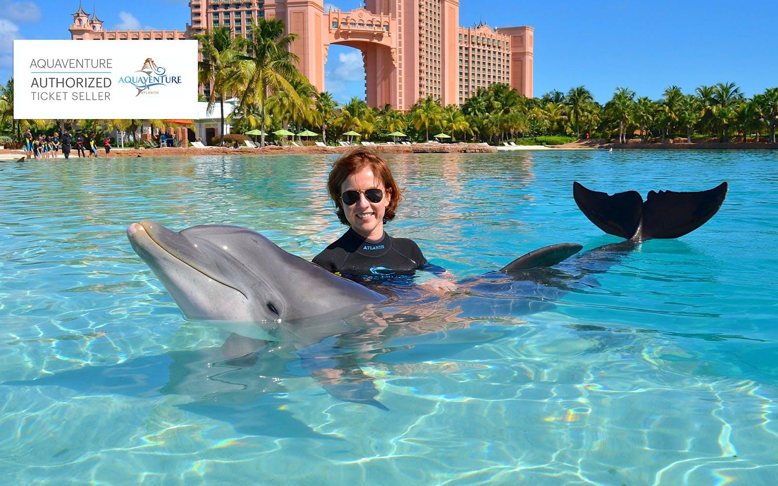 beaches-in-dubai-dolphin-encounter