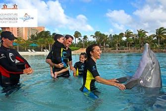 Dolphin Bay Dubai - 2
