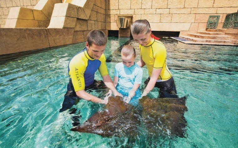 Ray Feeding with optional Aquaventure Tickets