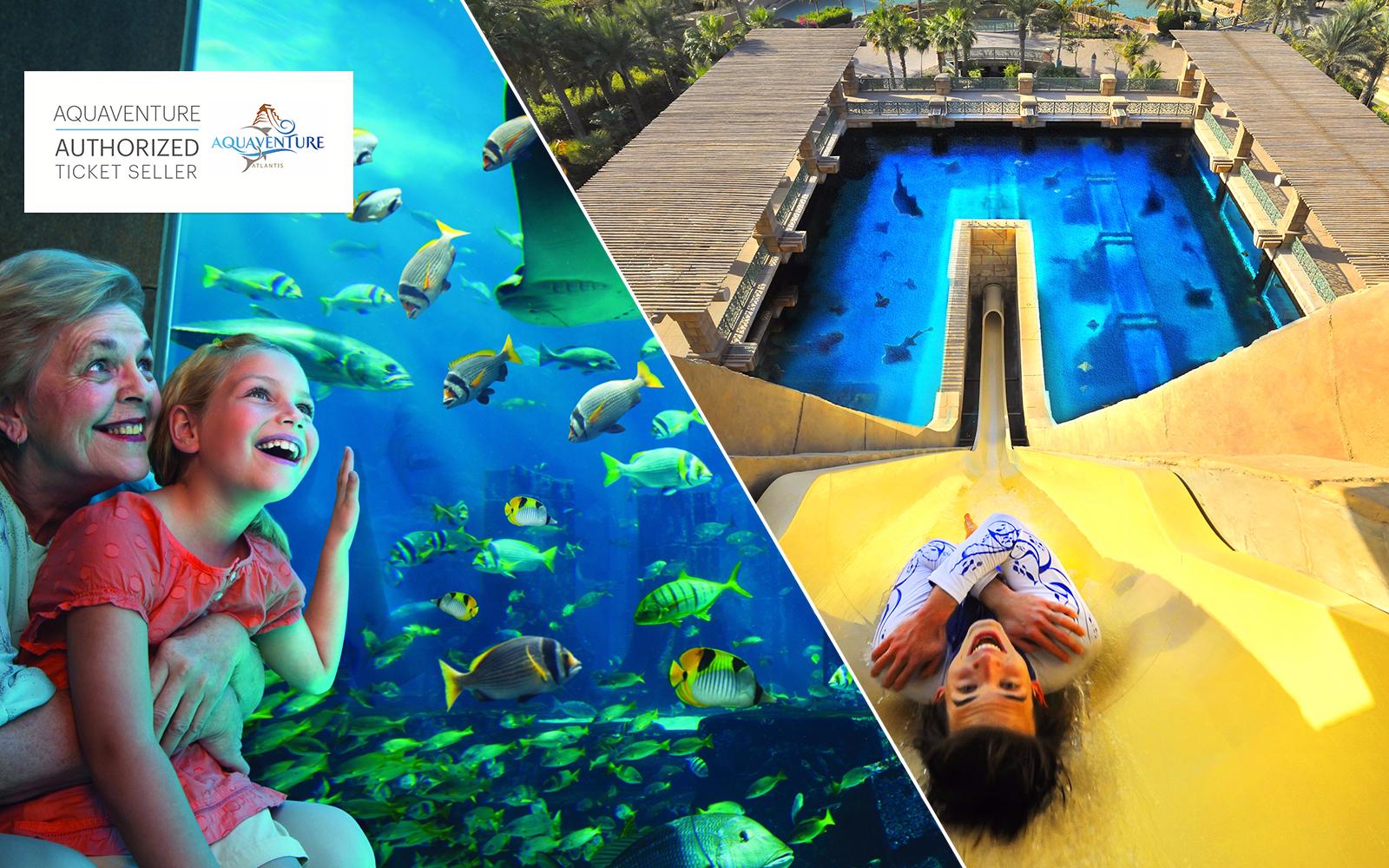Aquaventure Waterpark Tickets Best Prices Online On Headout