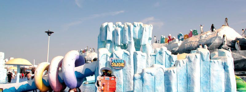 ice land water park day trip