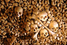 Paris City Vision Catacombs