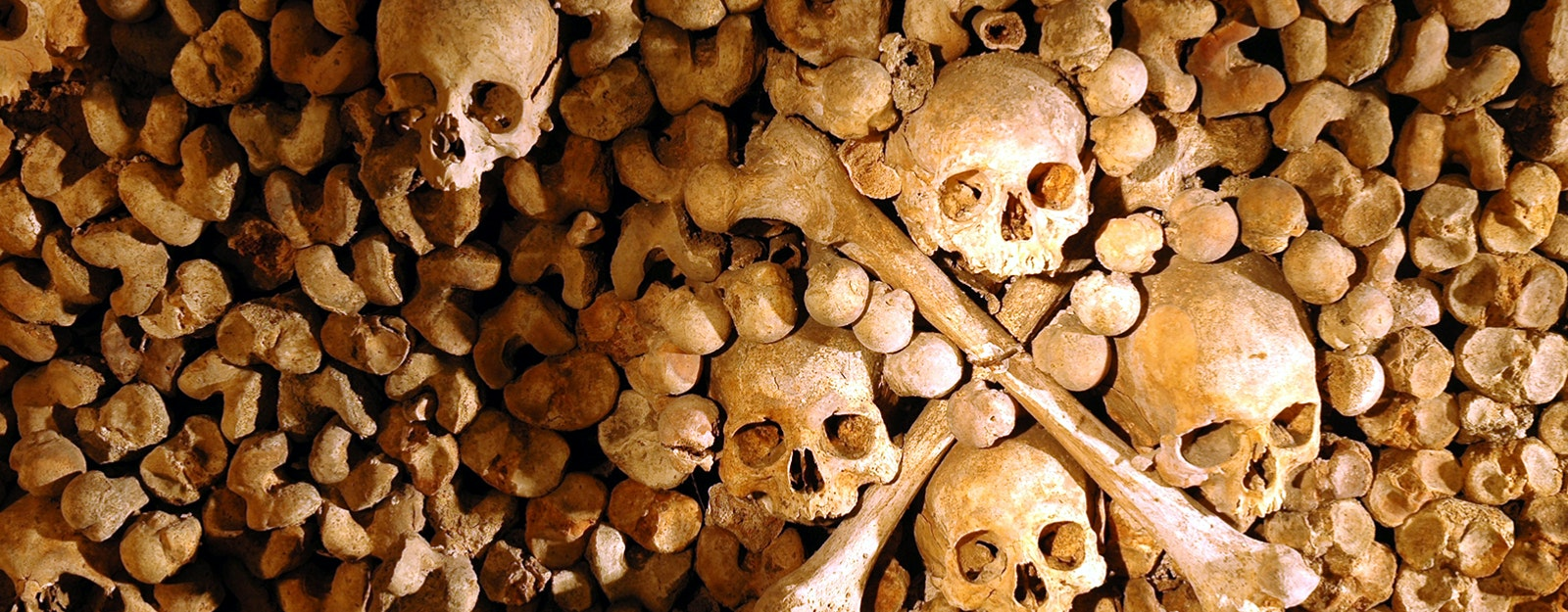 Paris Skip The Line Tickets - Catacombs