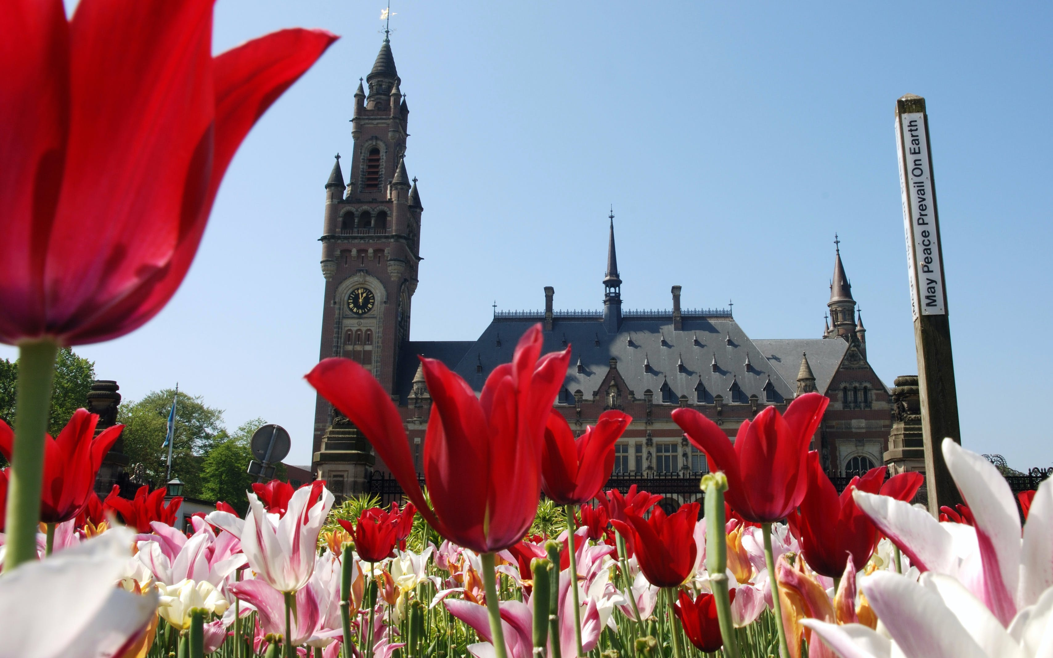 small group tour: full day trip to rotterdam, delft and the hague from amsterdam-2