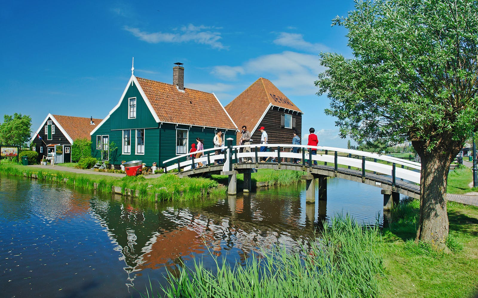 half day trip to zaanse schans-3