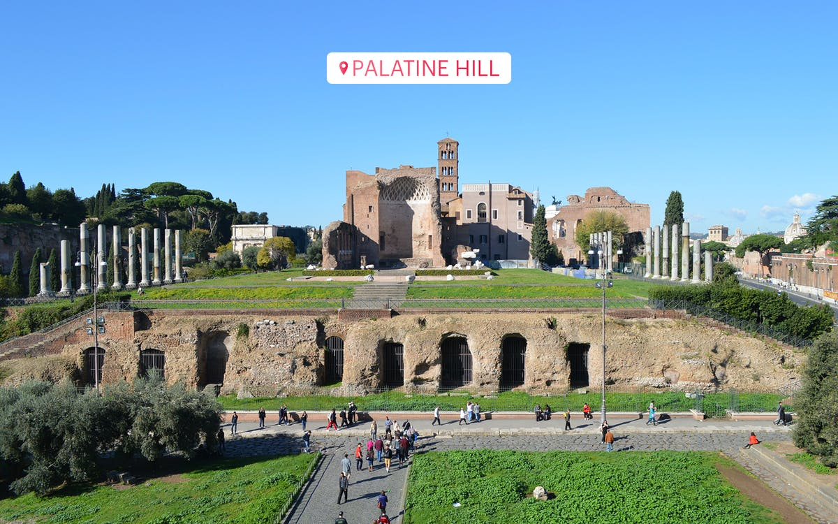 express guided tour of colosseum, vatican museums & sistine chapel-15