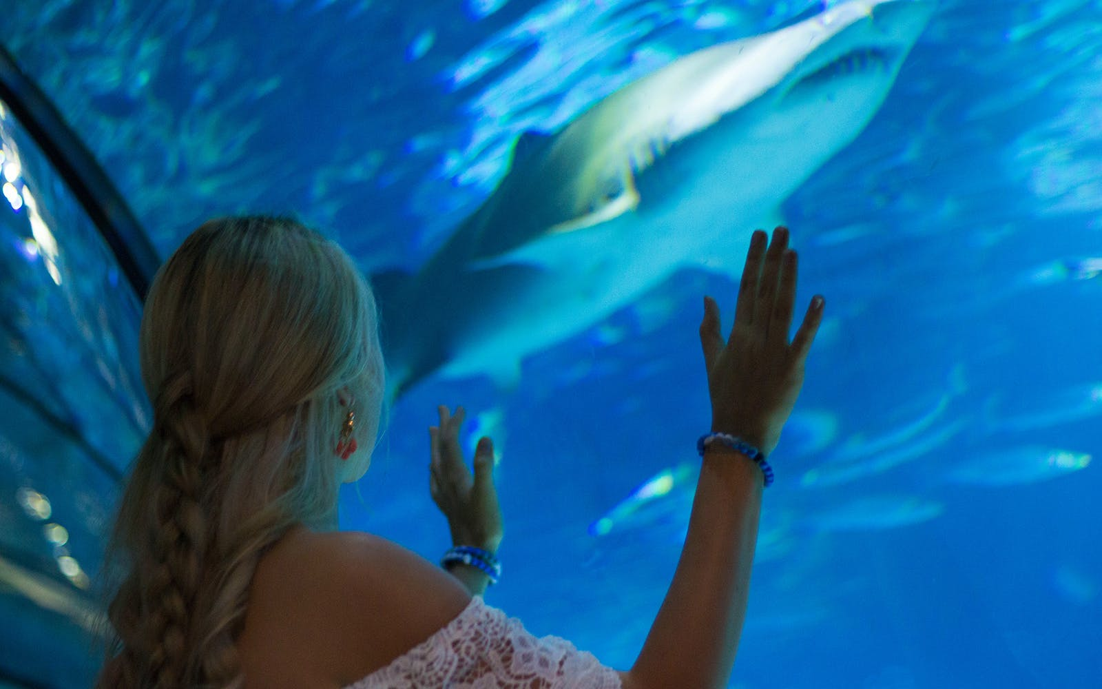 fast track tickets to barcelona aquarium-5