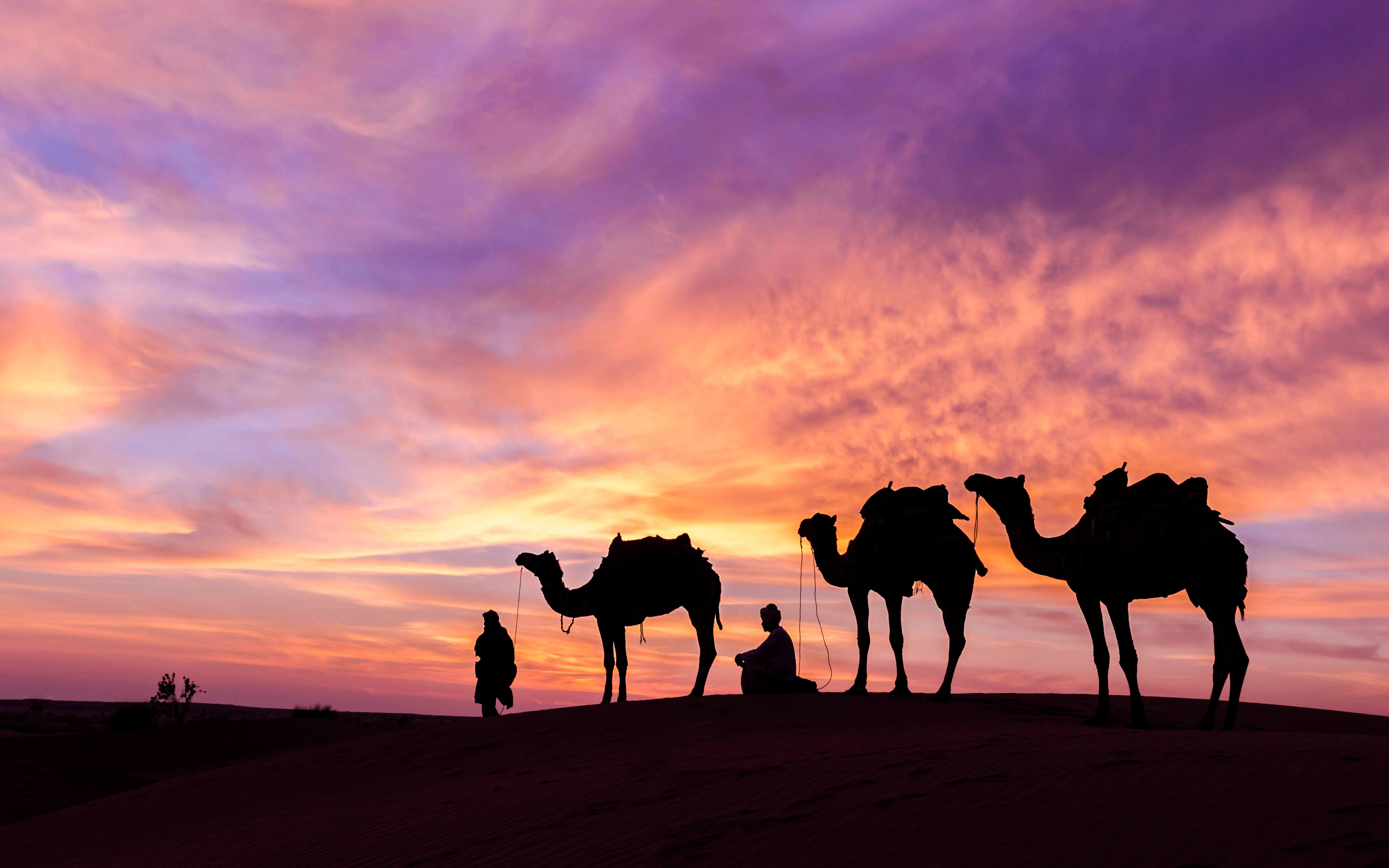 5 Day Dubai Itinerary - Desert Safari - 2