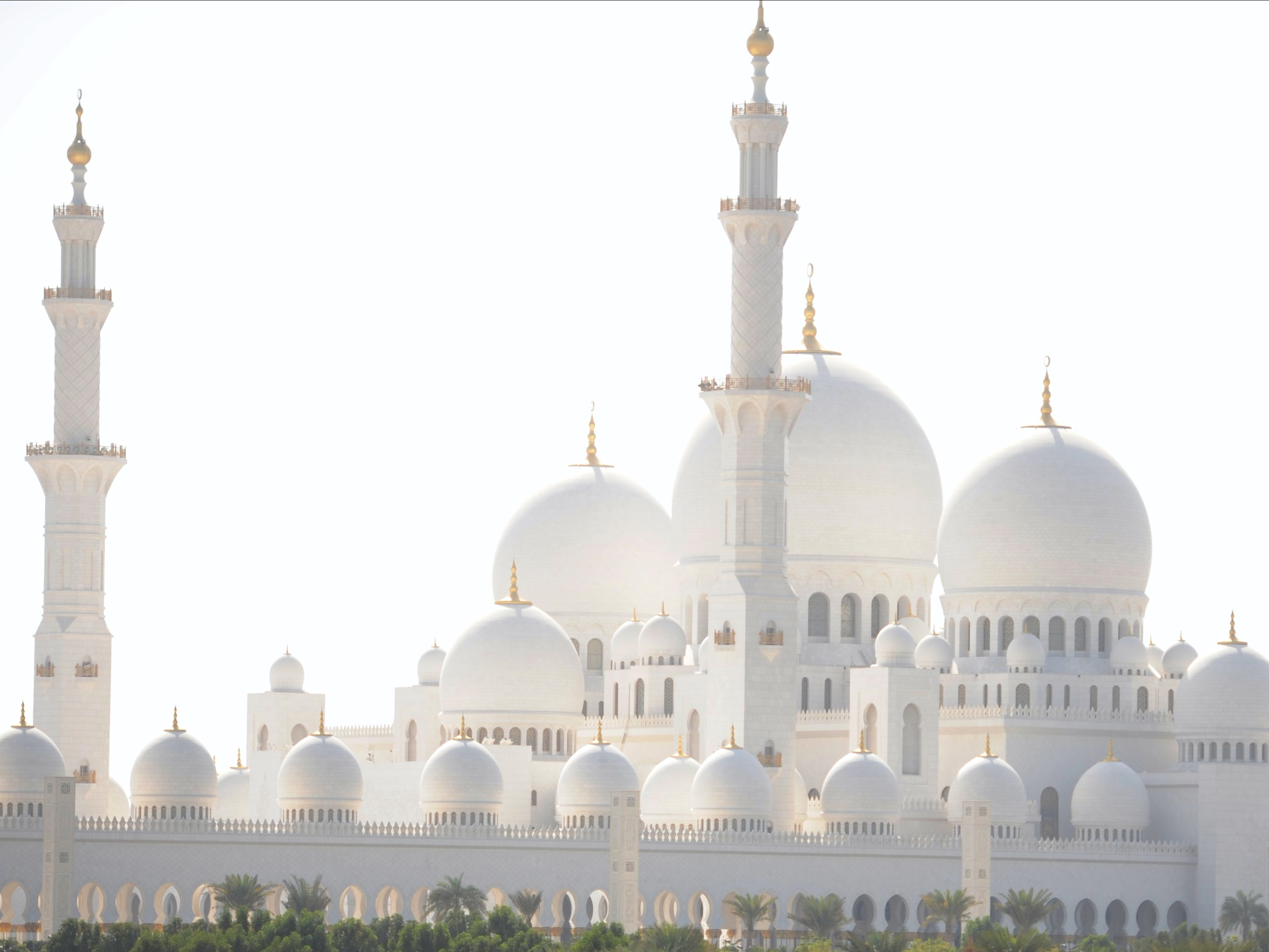 abu dhabi sightseeing tour-2