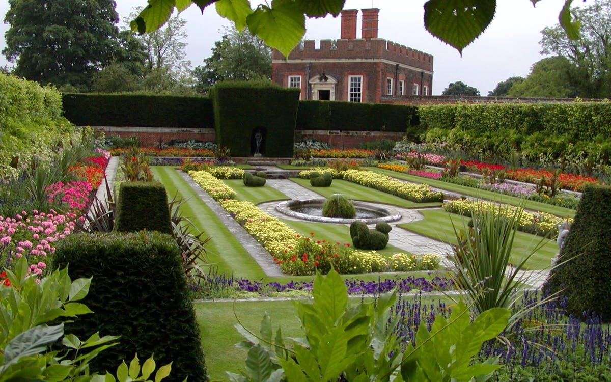 Roses In Garden: Hampton Court Palace, Maze And Magic Gardens London