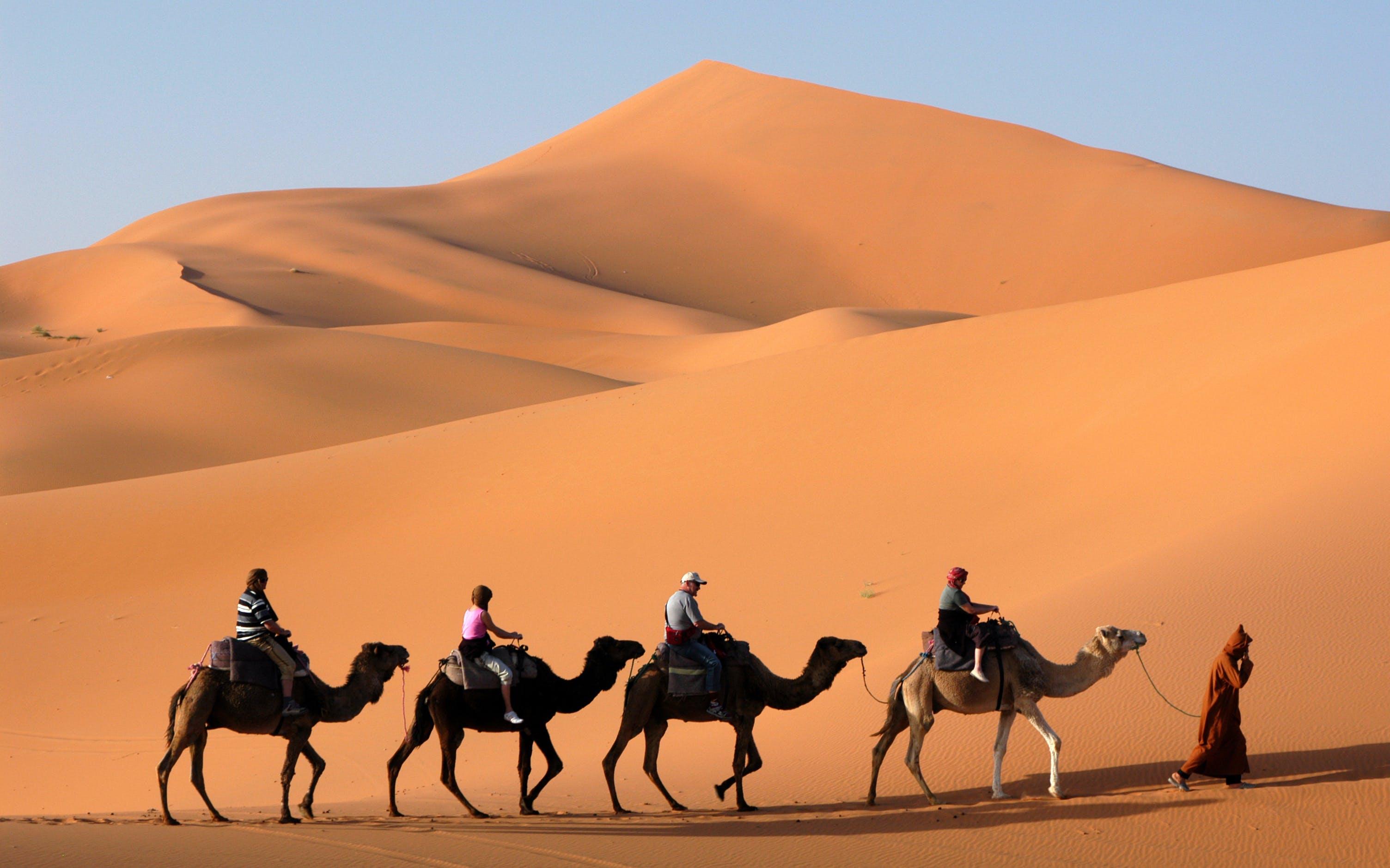 desert-nature-safari-dubai