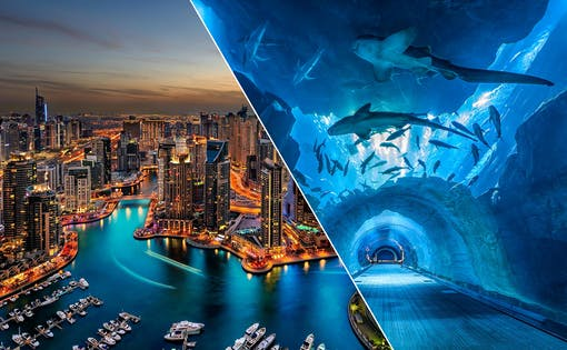 Dubai City Tour, Aquarium & Burj Khalifa Tickets Combo