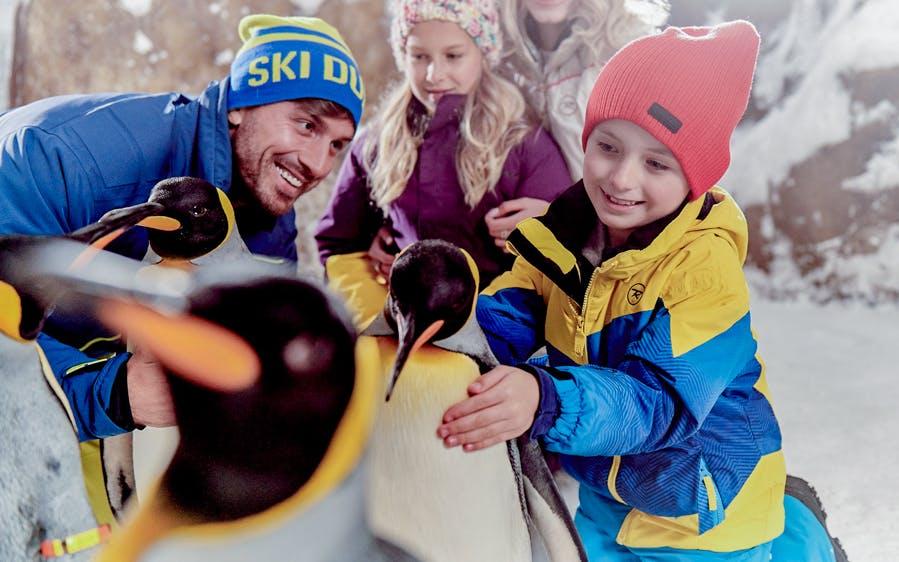 ski dubai: snow plus pass-0