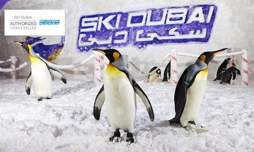 Best Theme Parks Dubai - Ski Dubai - 3