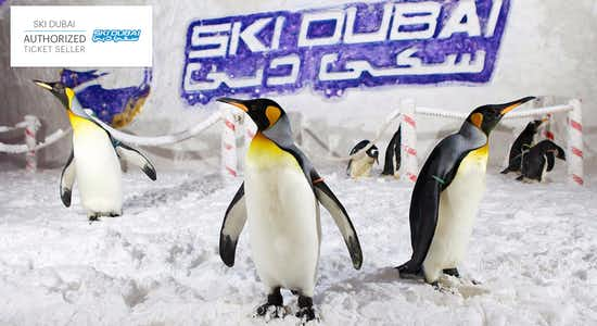 Ski Dubai tickets: Penguin Pass