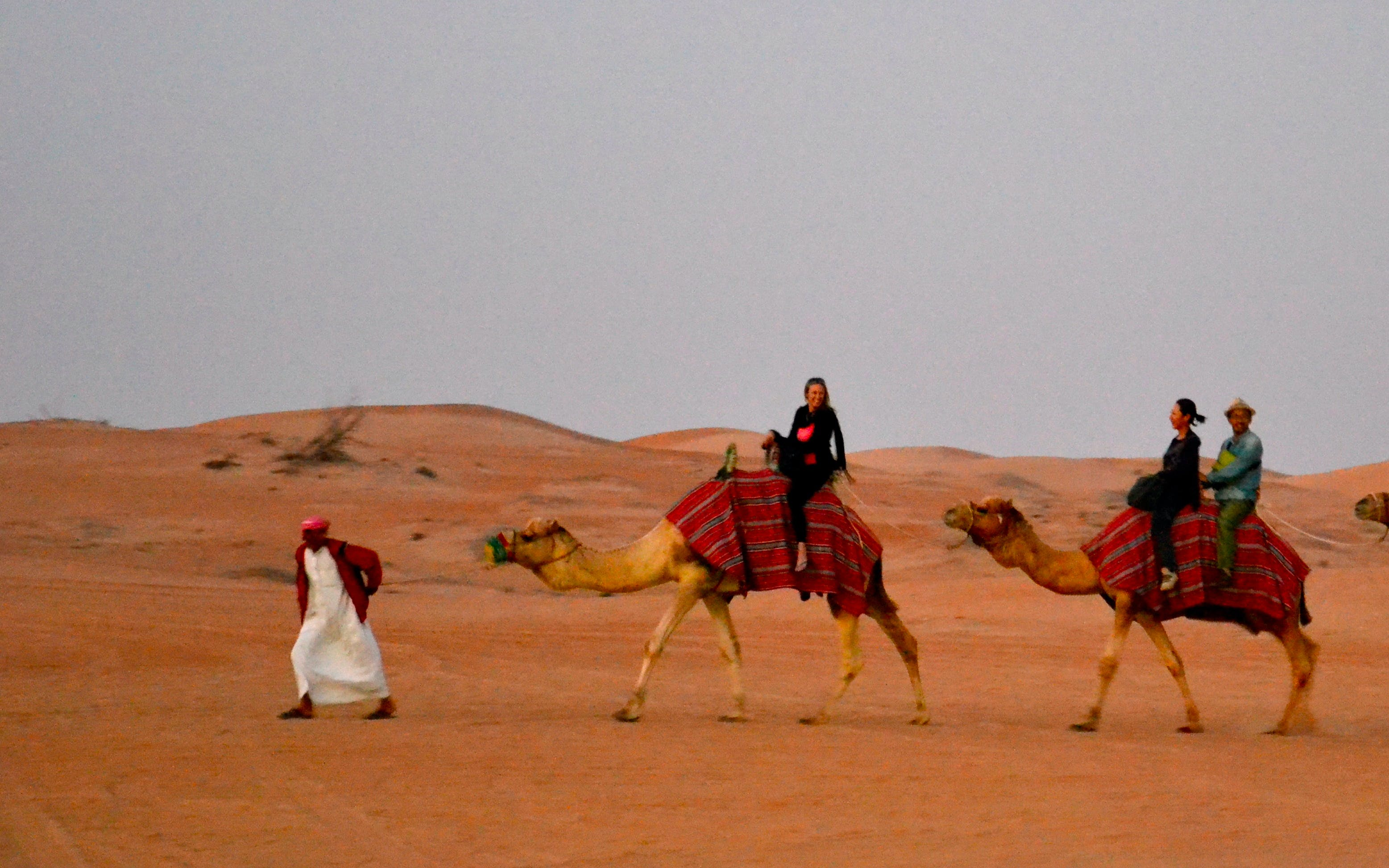 luxury-desert-safari-dubai-camel-ride