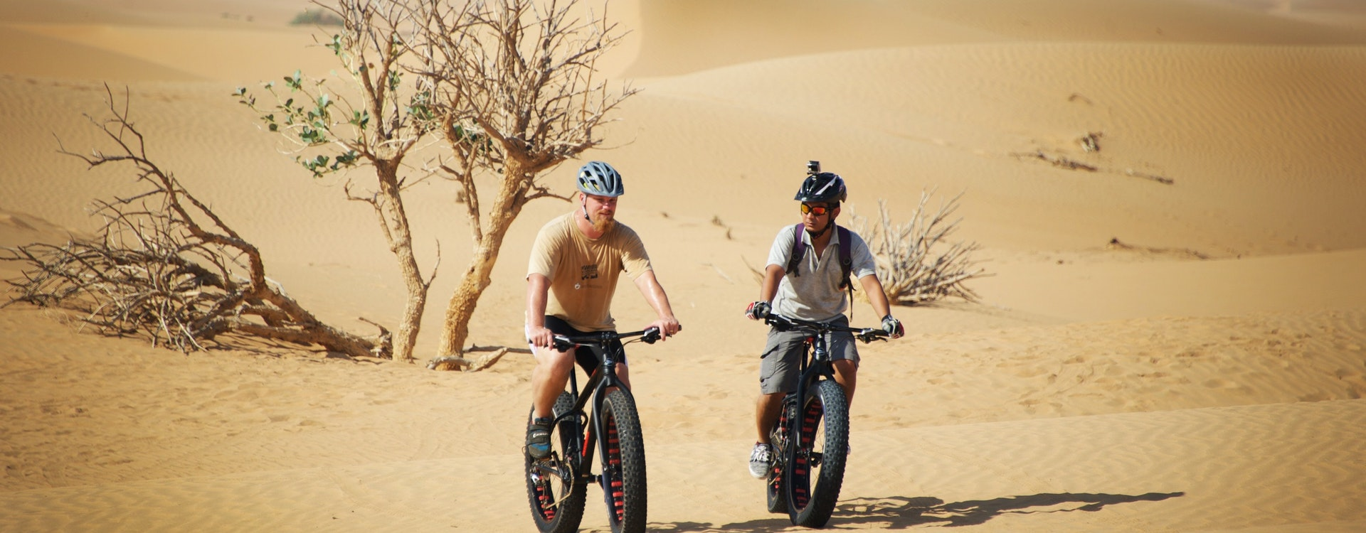 adventure desert safaris fat bike